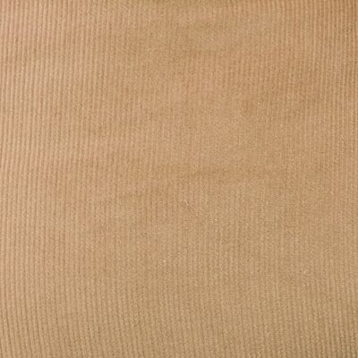 Mini Corduroy Cotton Dining Chair Cushion Fabric: Latte