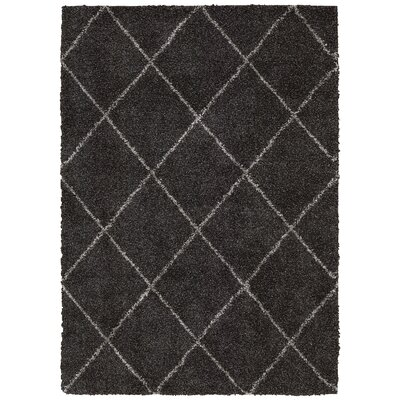 Psyche Charcoal Area Rug Rug Size: 5 x 7