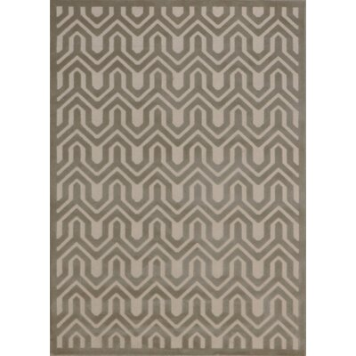 Zopyros Light Gray Area Rug Rug Size: Rectangle 36 x 56