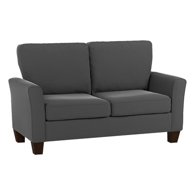 Asberry Compact Sofa Upholstery Color: Gray Velvet