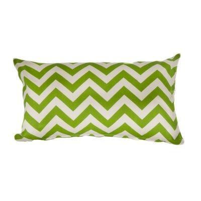Timaeus Outdoor Lumbar Pillow Color: Sage