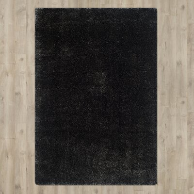 Virgo Charcoal Area Rug Rug Size: Rectangle 9 x 12
