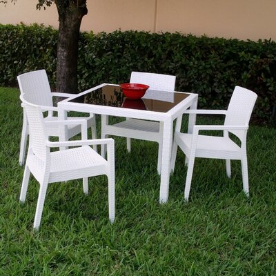 Kassiopeia 5 Piece Dining Set Color: White