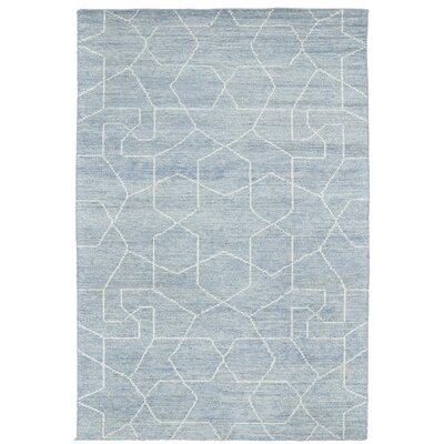 Aracely Hand-Woven Light Blue/Slate Area Rug Rug Size: 8 x 11