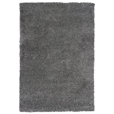 Electra Gray Area Rug Rug Size: 53 x 77