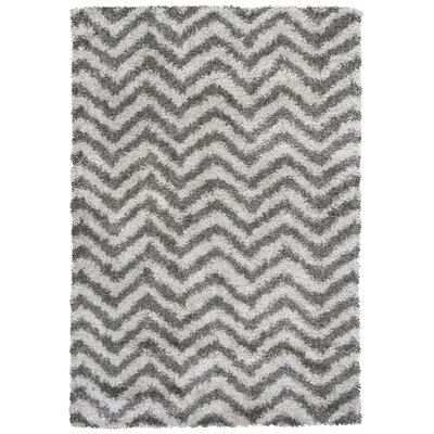 Electra Silver Area Rug Rug Size: 33 x 53