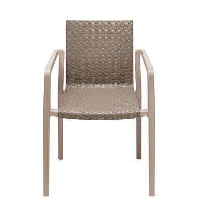Cetus Arm Chair