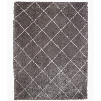 Abarca Gray/White Area Rug Rug Size: Rectangle 53 x 72