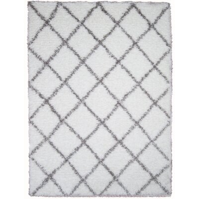 Abarca White Area Rug Rug Size: Rectangle 53 x 72