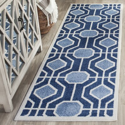Izador Light Blue / Navy Indoor/Outdoor Area Rug Rug Size: Runner 23 x 7
