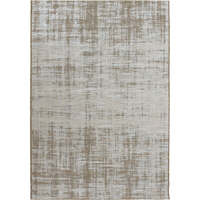 Abdera Light Blue/Brown Indoor/Outdoor Area Rug Rug Size: 51 x 76