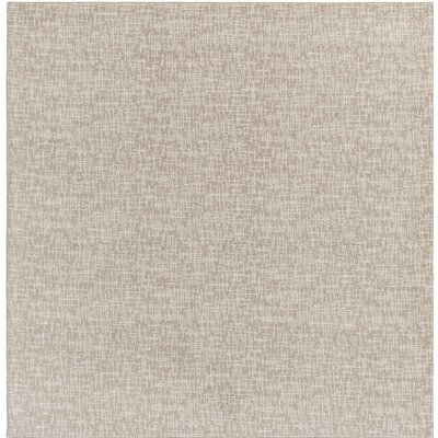 Gray Indoor/Outdoor Area Rug Rug Size: Square 6