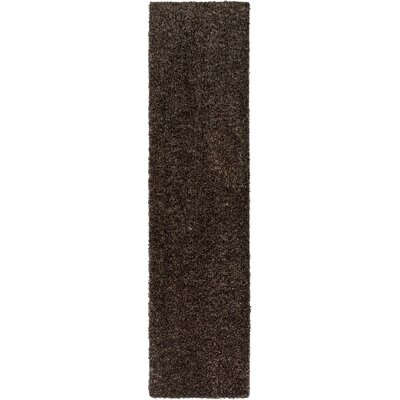 Birkholz Dark Brown Indoor/Outdoor Area Rug Rug Size: Runner 2 x 10