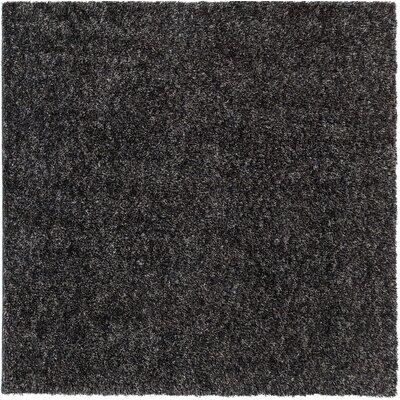 Gaius Gray Indoor/Outdoor Area Rug Rug Size: Square 6