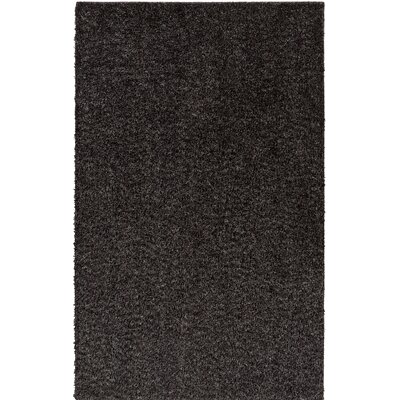 Apollonia Black Indoor/Outdoor Area Rug Rug Size: Octagon 4
