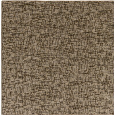 Attalus Brown Indoor/Outdoor Area Rug Rug Size: Square 4
