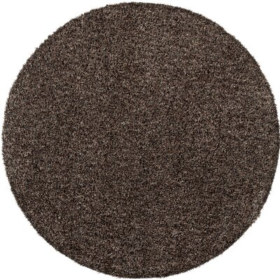 Birkholz Dark Brown Indoor/Outdoor Area Rug Rug Size: Round 6