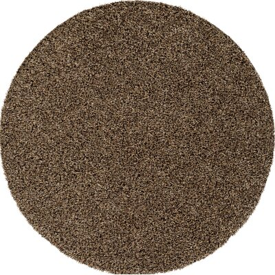 Brown Indoor/Outdoor Area Rug Rug Size: Round 6