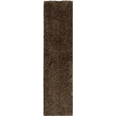 Brown Indoor/Outdoor Area Rug Rug Size: Runner 2 x 10