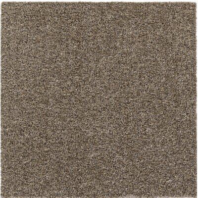 Dulcia Solid Gray Indoor/Outdoor Area Rug Rug Size: Square 6'