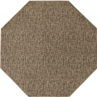 Attalus Brown Indoor/Outdoor Area Rug Rug Size: Octagon 4