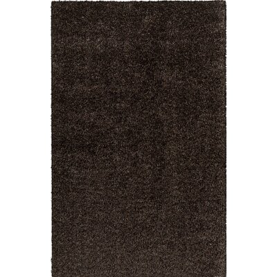 Birkholz Dark Brown Indoor/Outdoor Area Rug Rug Size: Round 4