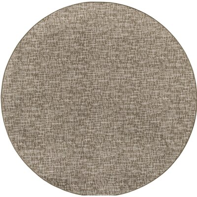 Cecilia Brown Indoor/Outdoor Area Rug Rug Size: Round 6