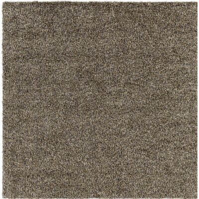 Dulcia Gray Indoor/Outdoor Area Rug Rug Size: Square 6