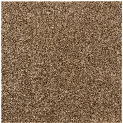 Brown Indoor/Outdoor Area Rug Rug Size: Square 6