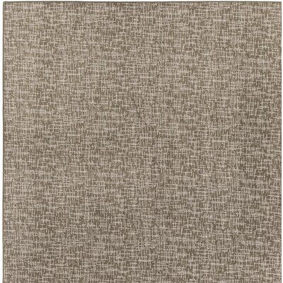 Cecilia Brown Indoor/Outdoor Area Rug Rug Size: Square 6