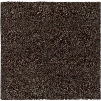 Birkholz Dark Brown Indoor/Outdoor Area Rug Rug Size: Square 6