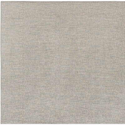 Hierius Blue/Gray Indoor/Outdoor Area Rug Rug Size: Square 6