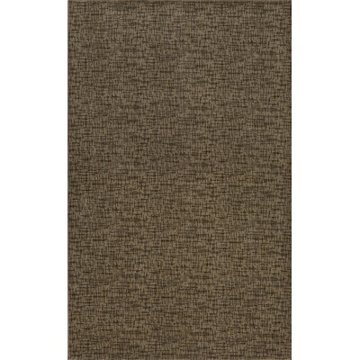 Braelyn Brown Indoor/Outdoor Area Rug Rug Size: Rectangle 5 x 8