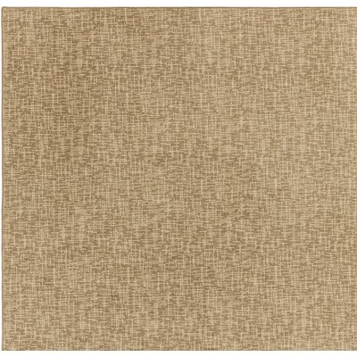 Beige Indoor/Outdoor Area Rug Rug Size: Square 6
