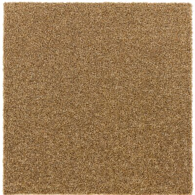 Euphrates Brown Indoor/Outdoor Area Rug Rug Size: Square 6