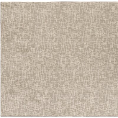 Cecilia�Gray Indoor/Outdoor Area Rug Rug Size: Square 6
