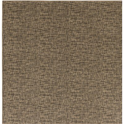 Attalus Brown Indoor/Outdoor Area Rug Rug Size: Square 6