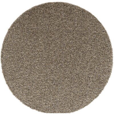Dulcia Solid Gray Indoor/Outdoor Area Rug Rug Size: Round 6