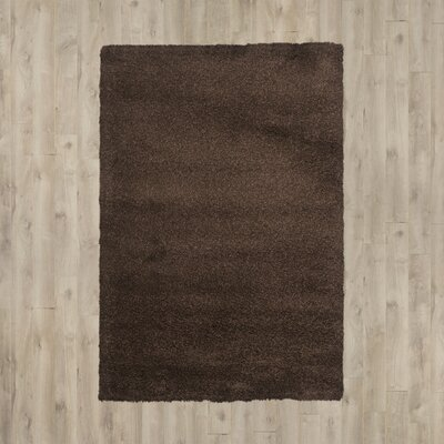 Arce Brown Area Rug Rug Size: 53 x 76