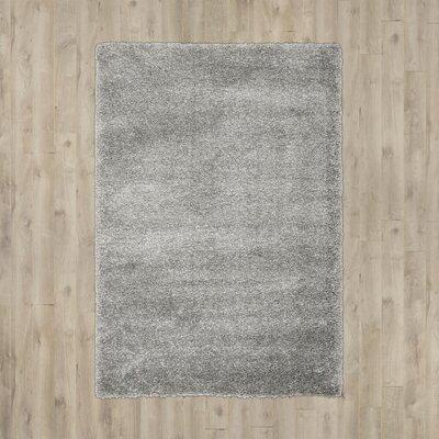 Arce Silver Area Rug Rug Size: 53 x 76