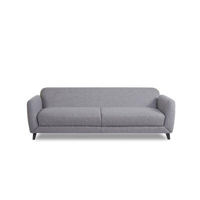 Procyon Sleeper Sofa Upholstery: Ash