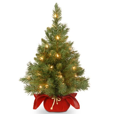2' Majestic Fir Artificial Christmas Tree with 35 Clear Lights