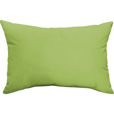 Branan Indoor/Outdoor Pillow Set Color: Apple Green