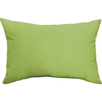 Branan Indoor/Outdoor Pillow Set Color: Apple Green