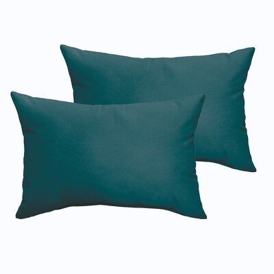 Branan Indoor/Outdoor Pillow Set Color: Teal
