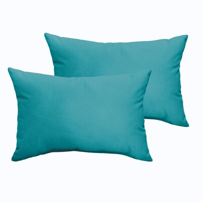 Branan Indoor/Outdoor Pillow Set Color: Aqua Blue