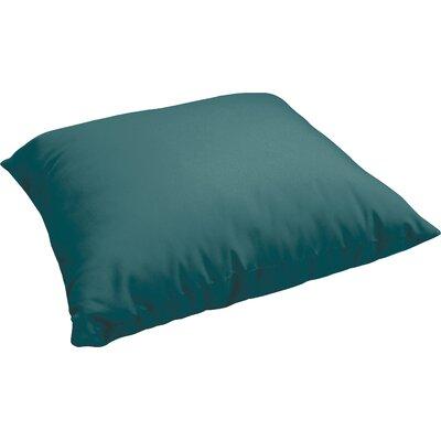 Branan Indoor/Outdoor Floor Pillow Color: Teal
