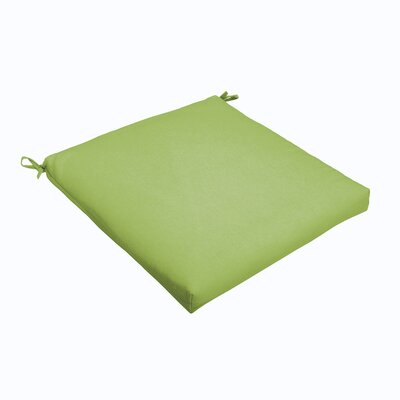 Outdoor Dining Chair Cushion Color: Apple Green, Size: 20 L x 20 W