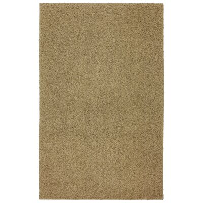 Larmon Bolster Shag Kings Gold Tufted Area Rug Rug Size: Rectangle 5 x 8