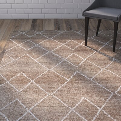 Aracely Hand Woven Brown/Ivory Area Rug Rug Size: Rectangle 8 x 11